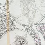 Owl and Lynx