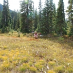 washington-pass-meadow-10-2