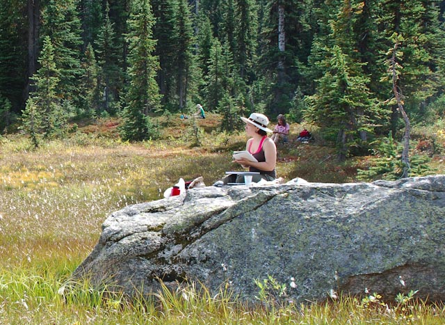 Washington Pass Meadow-10