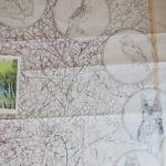 Birch Forest Animals 2