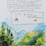© Kristen Gilje diablo-lake-and-green-flies-may19