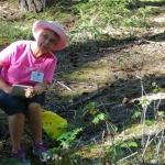 Wild journal 2012 Canyon Creek-17